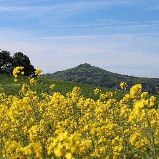 Blick aus dem Pleiser Hügelland auf den Ölberg