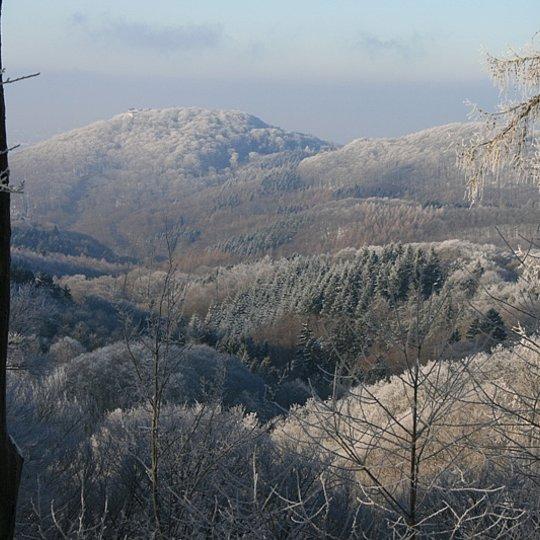 Winterliche Impressionen 1 (Photo: Iris Zumbusch)